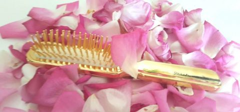 Janeke 1830: Nuova spazzola nuove coccole!